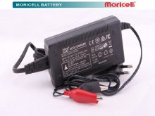 seald Lead Acid battery charger 12 v 3/0 Ah